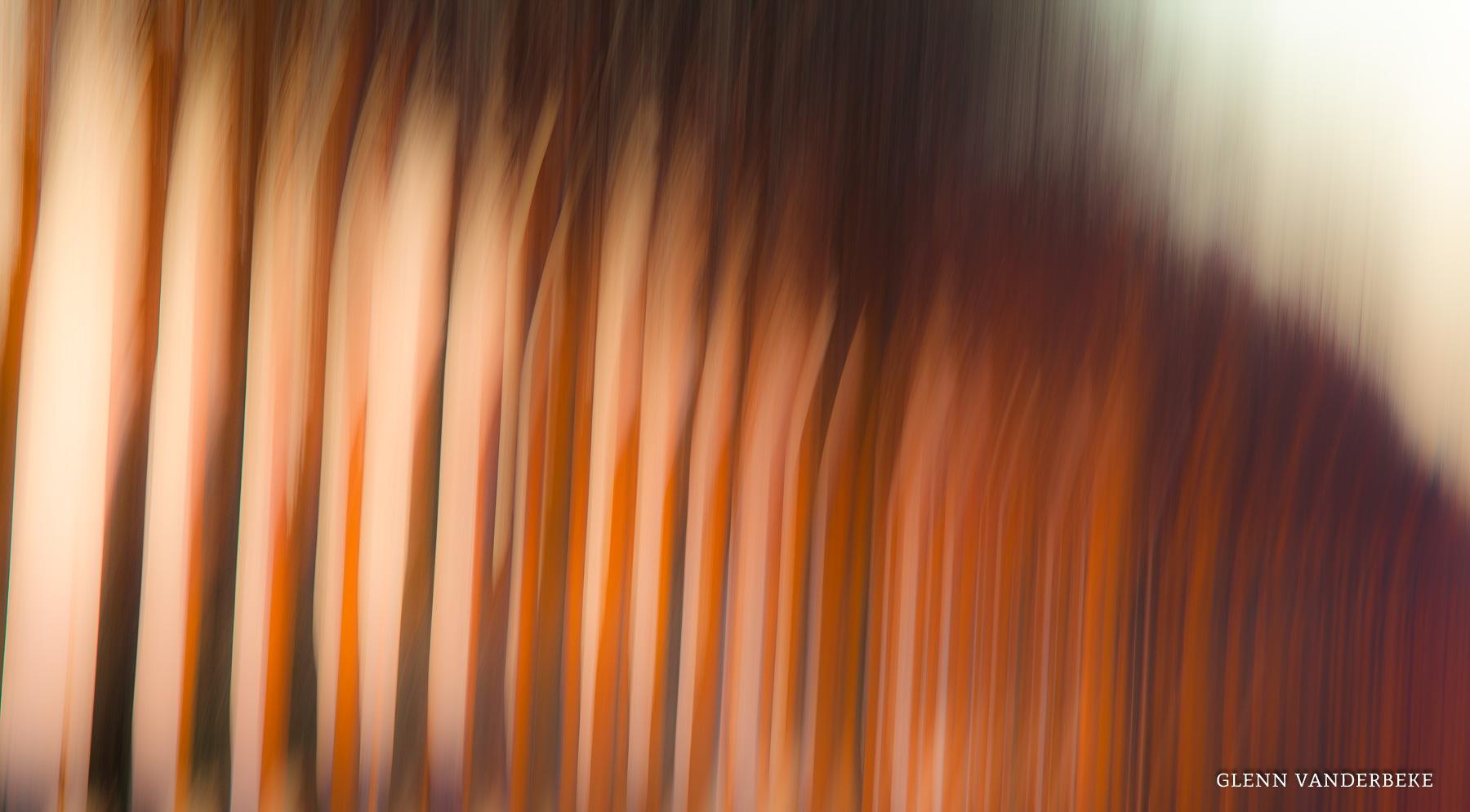 glenn vanderbeke, glenn vanderbeke fotografie, glenn vanderbeke belgisch landschapsfotograaf, landschapsfotograaf, landschapsfotografie glenn vanderbeke, landscape photographer glenn vanderbeke, fine art photographer Glenn Vanderbeke, Belgische landschapsfotograaf, landschapsfotografie west-vlaanderen, west vlaamse landschapsfotograaf, België, Damme, Damse vaart, Damse vaart fotografie