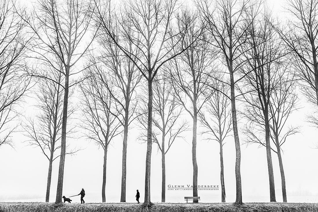 Wandelen langs de Damse Vaart, Wandeling Damse Vaart © West-Vlaamse landschapsfotograaf Glenn Vanderbeke
