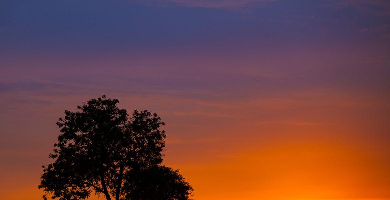 glenn vanderbeke, glenn vanderbeke fotografie, glenn vanderbeke belgisch landschapsfotograaf, landschapsfotograaf, landschapsfotografie glenn vanderbeke, landscape photographer glenn vanderbeke, fine art photographer Glenn Vanderbeke, Belgische landschapsfotograaf, landschapsfotografie west-vlaanderen, west vlaamse landschapsfotograaf, België, Dourbes