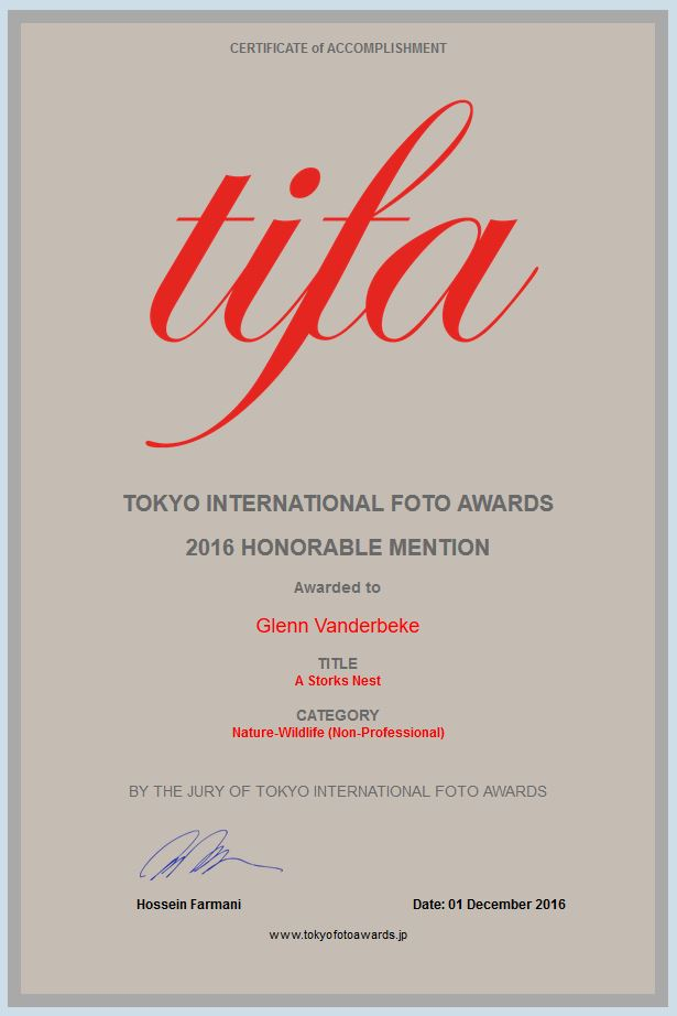 Tokyo International Foto Awards, TIFA, honorable mention, Glenn Vanderbeke, Glenn Vanderbeke landschapsfotograaf, landschapsfotografie west-vlaanderen