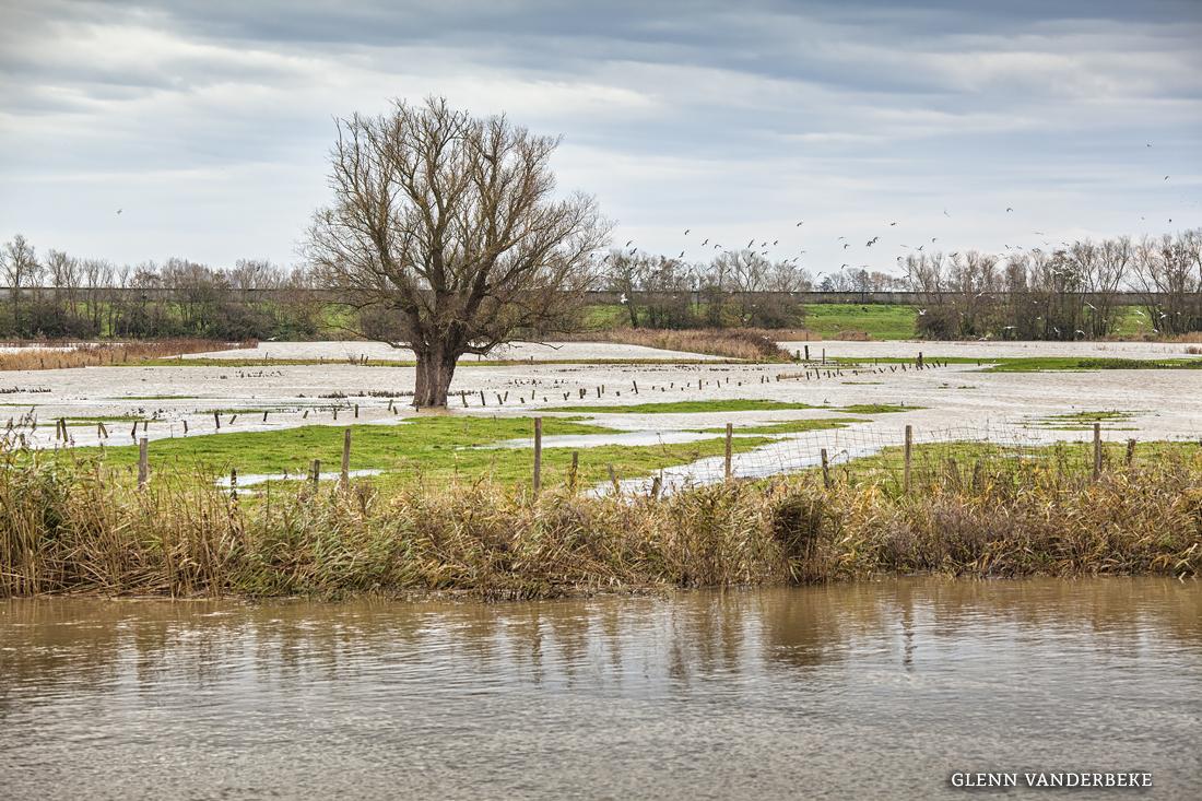 glenn vanderbeke, langs de ijzer, West Vlaanderen, landscahpsfotografie, landschapsfotograaf, Ijzerdijk, Diksmuide