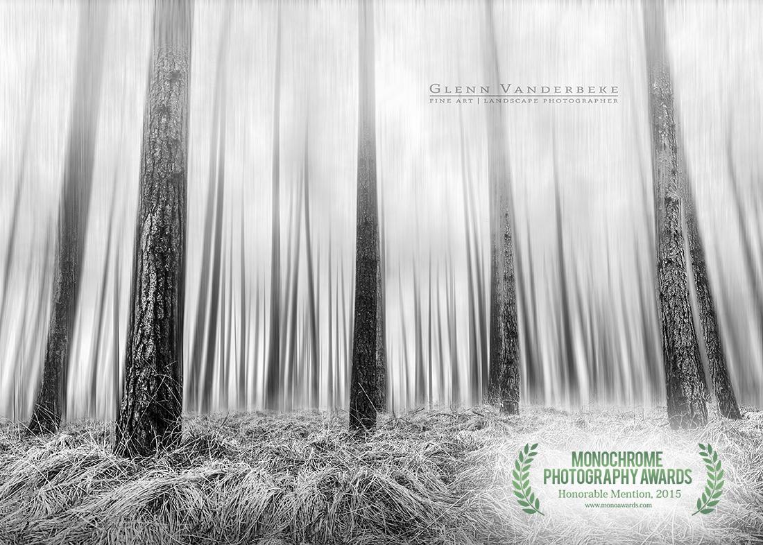 Glenn Vanderbeke, landschapsfotograaf, landscape photographer belgium, belgian landscape photographer, belgian fine art photographer, West-Vlaamse landschapsfotograaf, Monocrhome Photography Awards, MonoAwards, fine art photography,