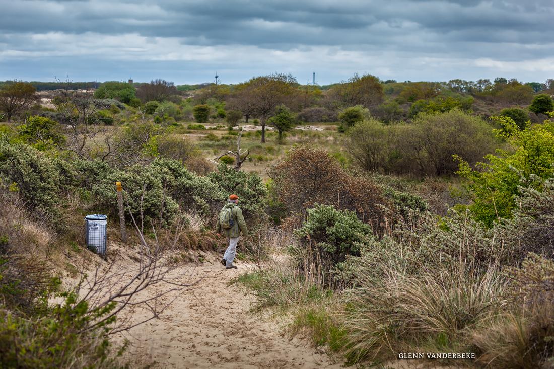Natuurreservaat De Westhoek, Natuur de Panne, fotografie de westhoek, West-Vlaamse Landschapsfotograaf Glenn Vanderbeke