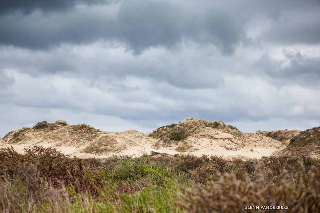 glenn vanderbeke, landschapsfotografie, landschapsfotograaf, foto uitstap, foto dagtrip, fotografische dagtrip, west-vlaamse fotografen, west-vlaamse fotograaf, Natuurreservaat, Natuurreservaat De Westhoek, Fotografie De Panne, Fotografie De Westhoek