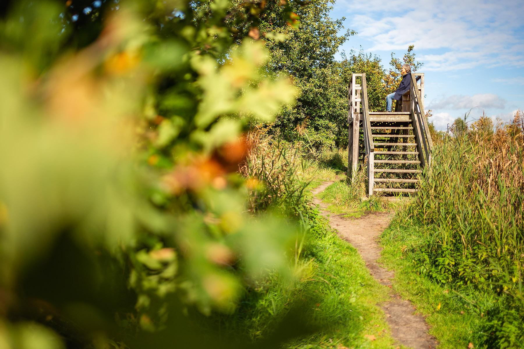 Uitkijktoren in het Hageven in Pelt (Neerpelt), West-Vlaamse landschapsfotograaf Glenn Vanderbeke