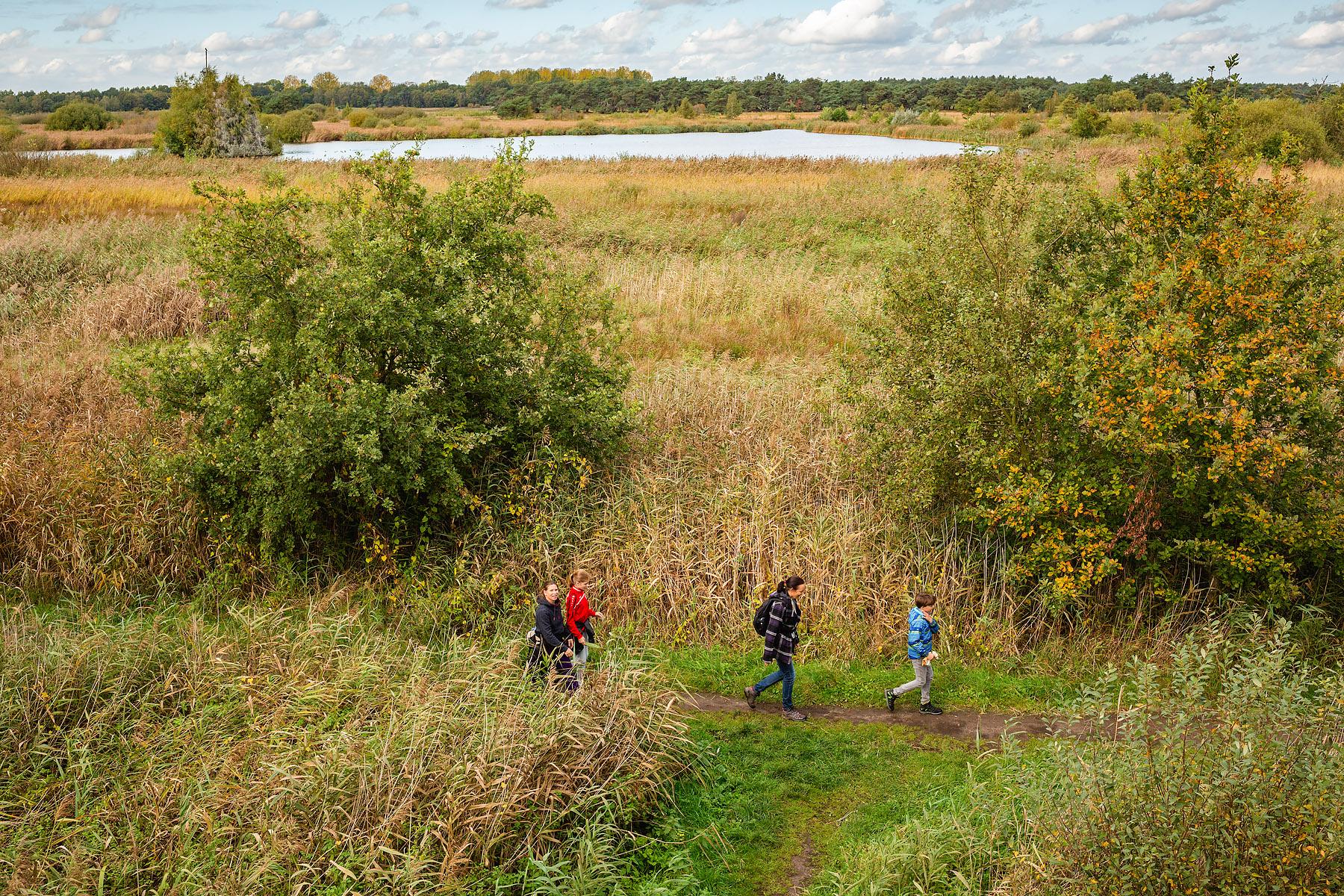 Uitzicht over Uitzicht over het Hageven in Pelt (Neerpelt), West-Vlaamse landschapsfotograaf Glenn Vanderbekehet Hageven in Pelt (Neerpelt), fotograaf Glenn Vanderbeke