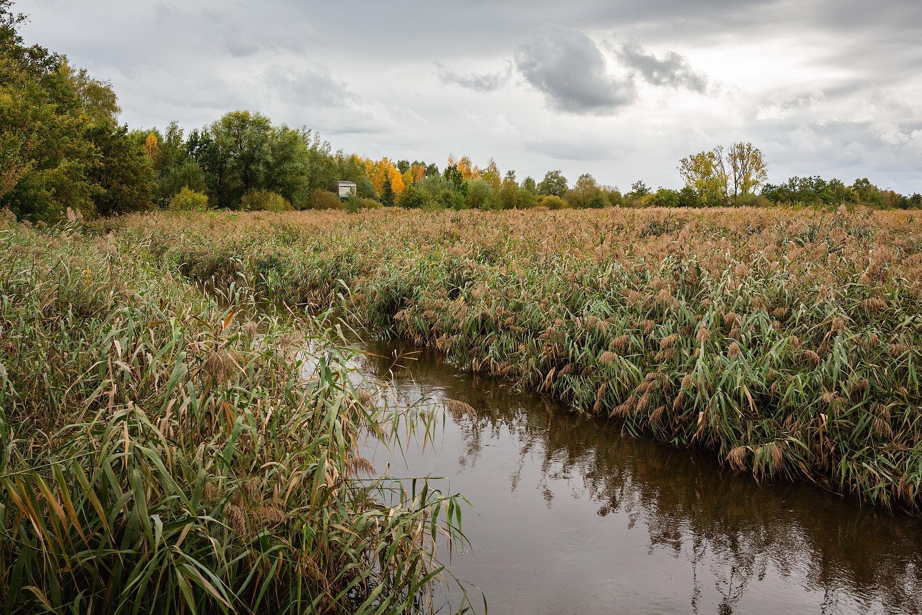De Dommel stroomt door het Hageven in Pelt (Neerpelt), West-Vlaamse landschapsfotograaf Glenn Vanderbeke