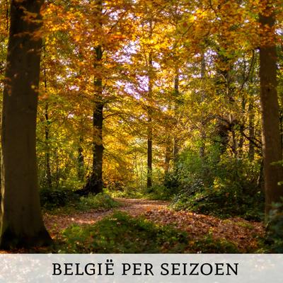 België ontdekken per seizoen