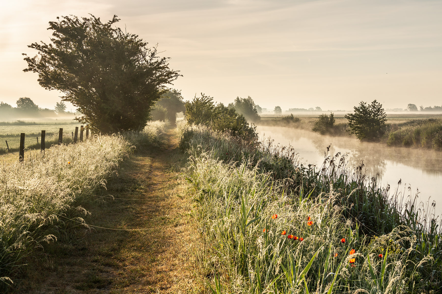 Het prachtige landschap rondom Fintele, Landschapsfotografie in Fintele, Fintele, restaurant De Hooipiete in Fintele, België, Glenn Vanderbeke