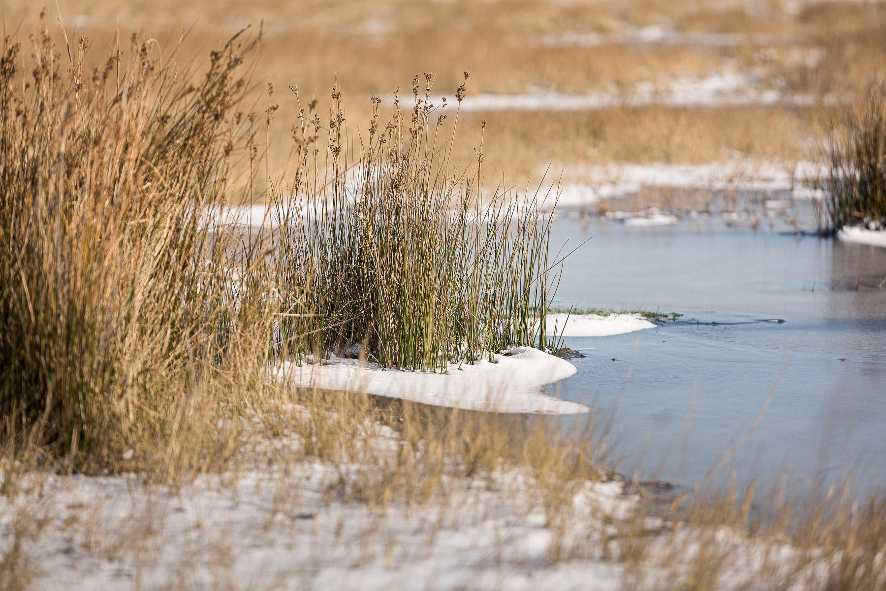 De Baai van Heist in Knokke-Heist, landschapsfotograaf Glenn Vanderbeke, wandelen in Knokke-Heist, natuur in Knokke-Heist, Glenn Vanderbeke, Glenn Vanderbeke landschapsfotograaf